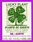 LUCKY PLANT