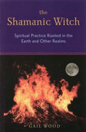 Shamanic Witch by Gail Wood